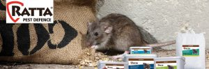 Phillips Animal Health - Rodenticides and Fly Control_banner
