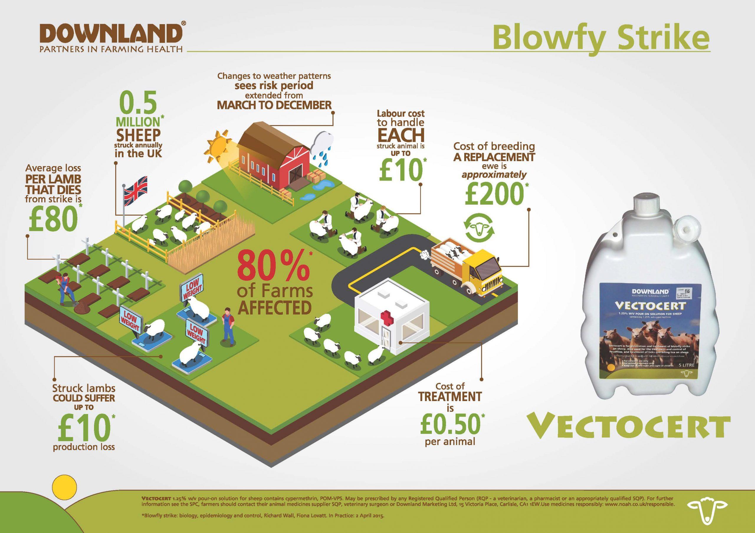 infographic-downland-landscape-2